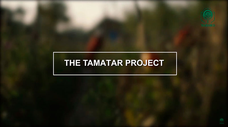 The Tamatar Project